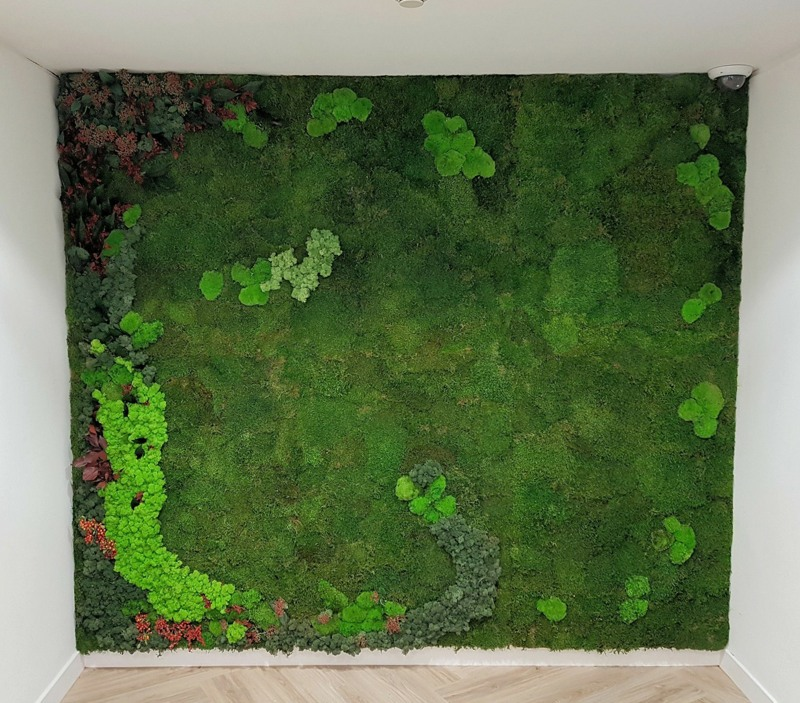 Preserved Moss Wall Art