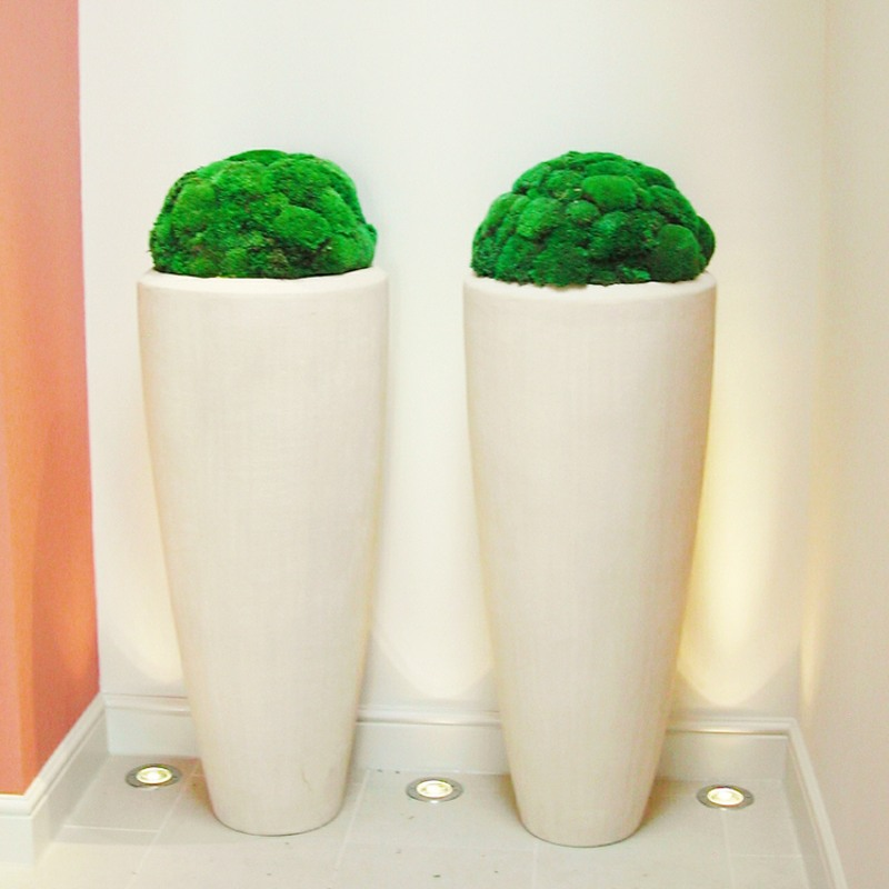 Preserved bun moss domes in 1200mm stone resin Partners.jpg