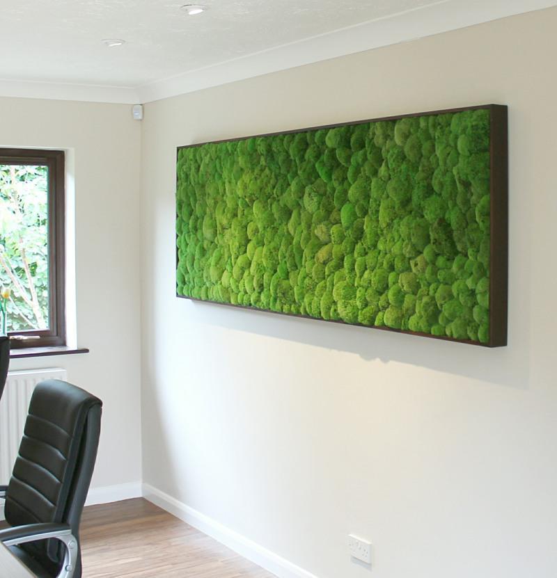 Preserved bun moss frame