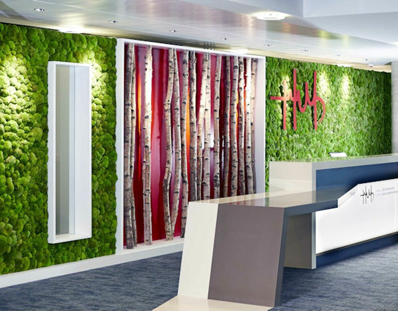 Preserved moss wall with silver birch stems Cardiff