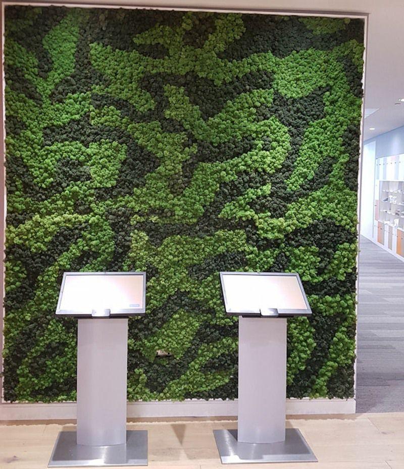Reindeer Moss Screen