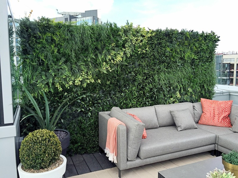 Roof Terrace living wall