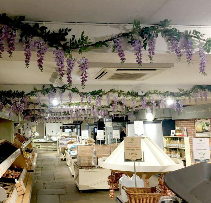 Wisteria Hanging Interior