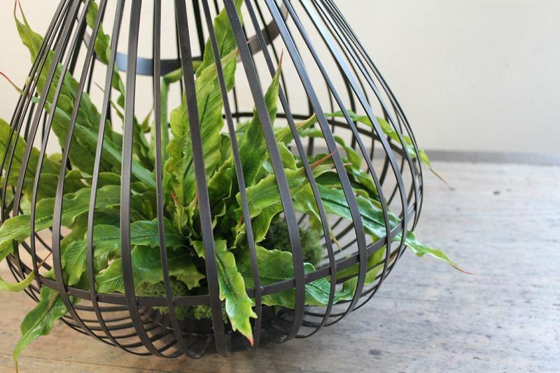 artificial Asplenium fern in matel framed planter