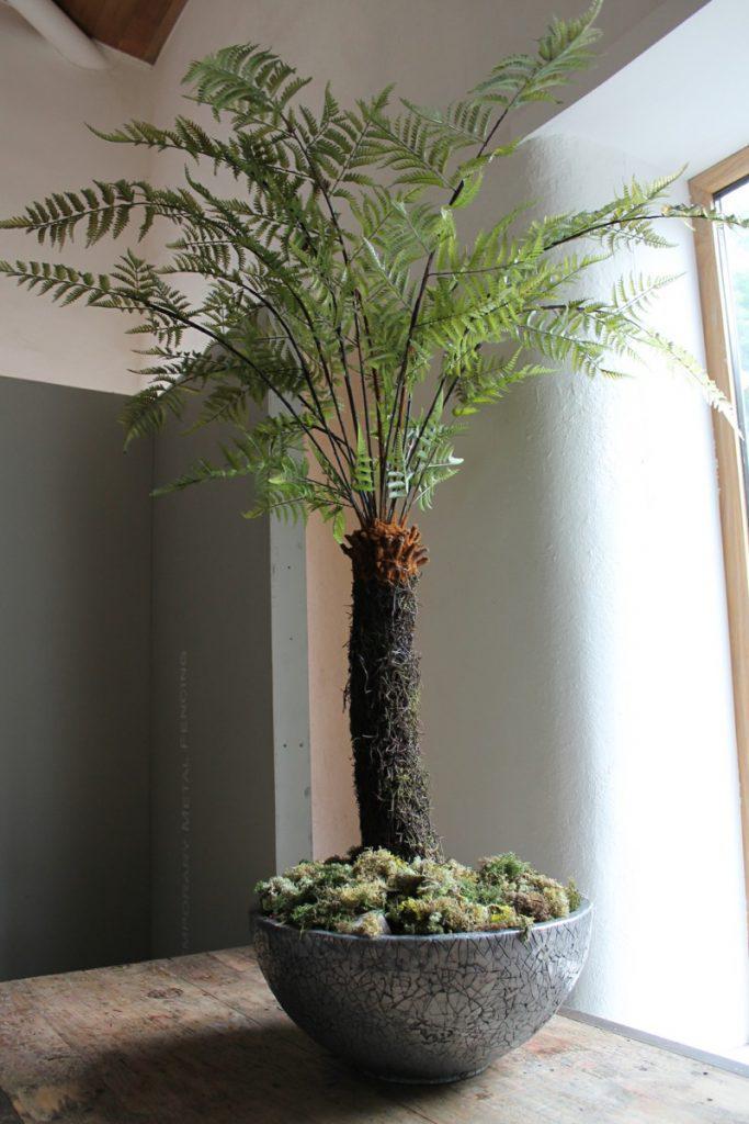 artificial Dicksonia Tree Fern