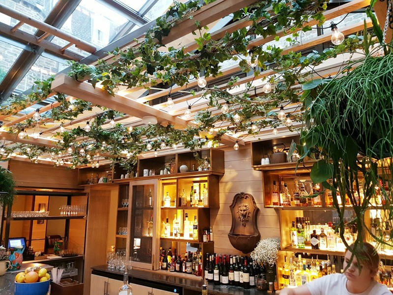 artificial ivy vines attached to interior beams