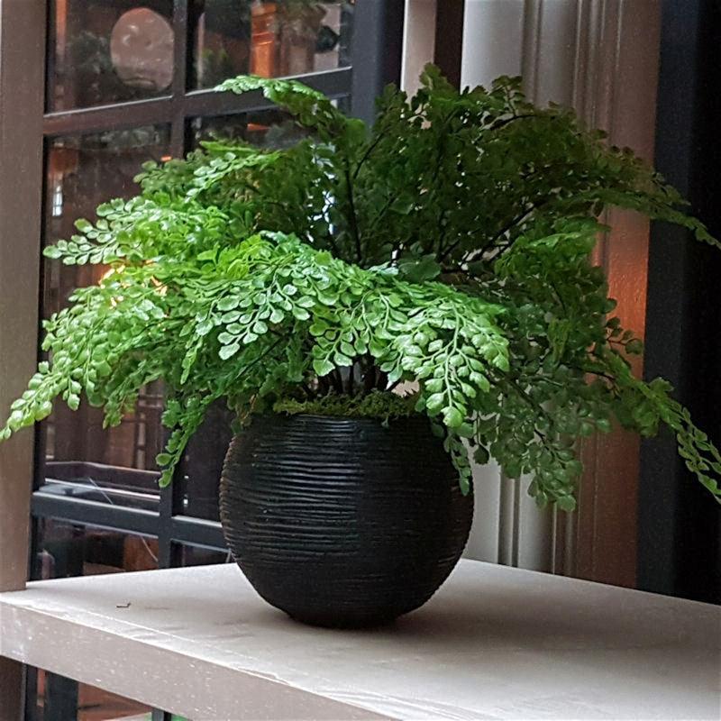 artificial plant in round ceramic pot