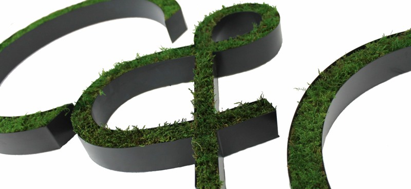 letters in real moss