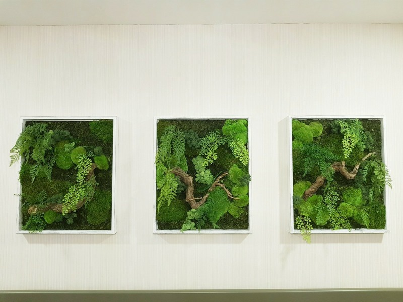 moss art small frames