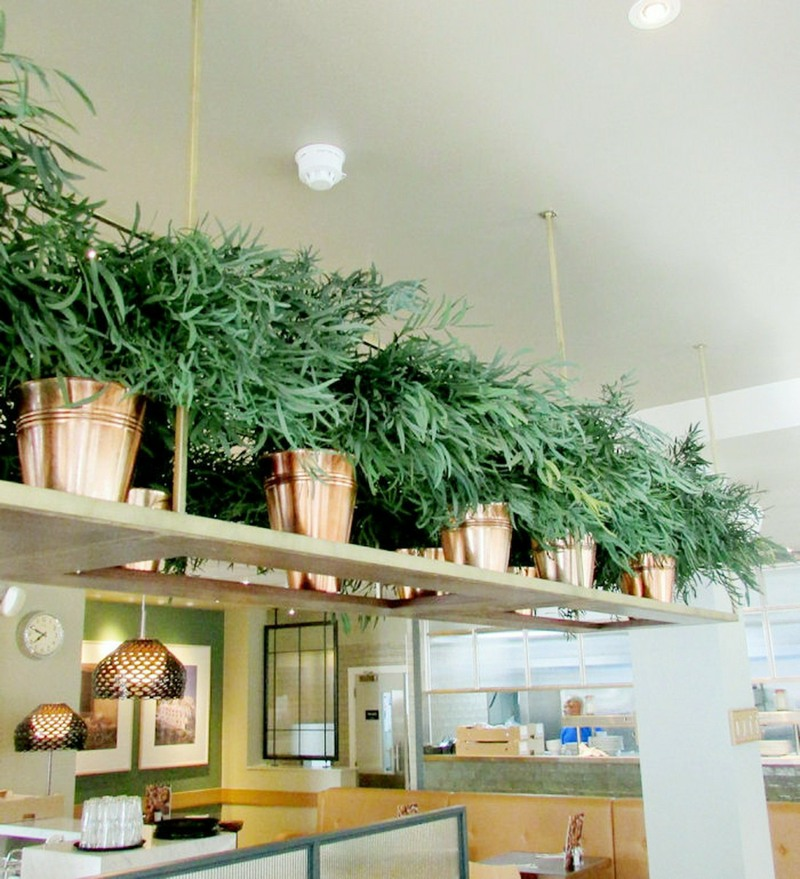 preserved nicoly foliage in copper style pots on shelving