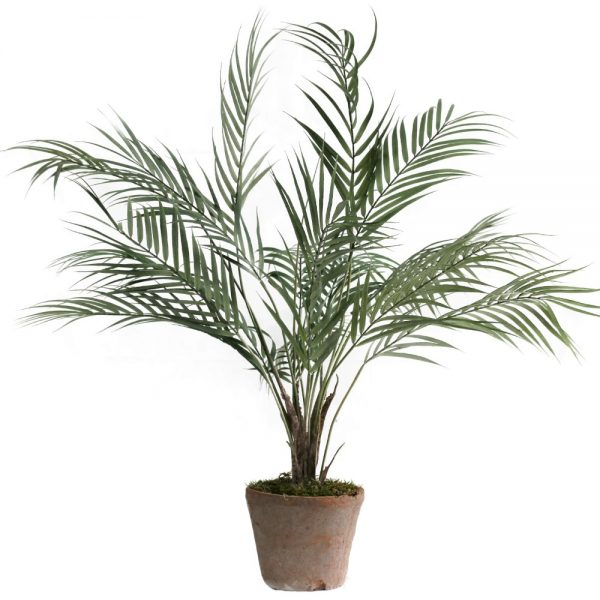 tt natural terracotta areca palm