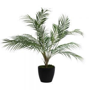 tt streamline graphite areca palm