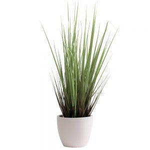 tt streamline white grass