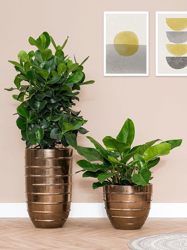 Beauty Partner Gold Ceramic planter