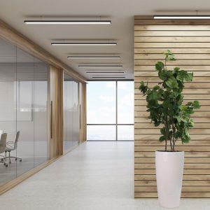 LFS Bauhinia 75 white_Office