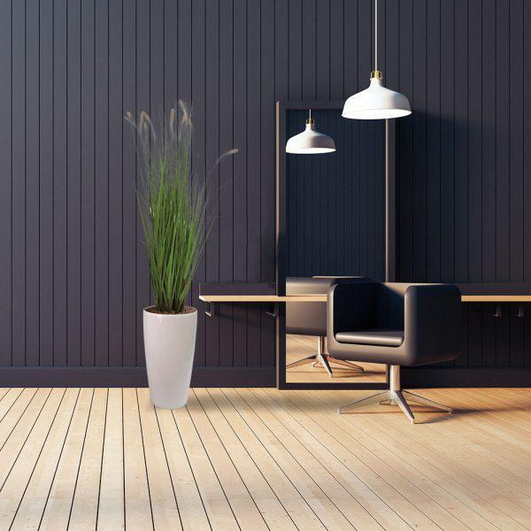 LFS Dogtail Grass 56 White_Salon