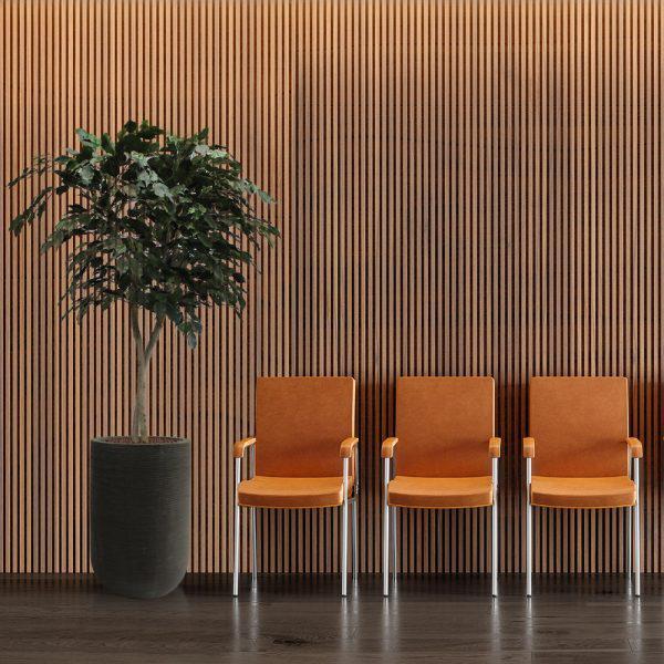 LFS Ficus Large Cody 70_Office