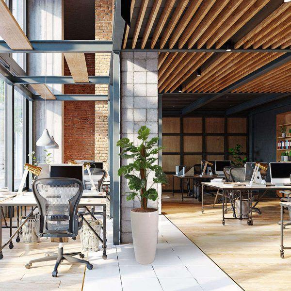 LFS Monstera Small 56 White Office