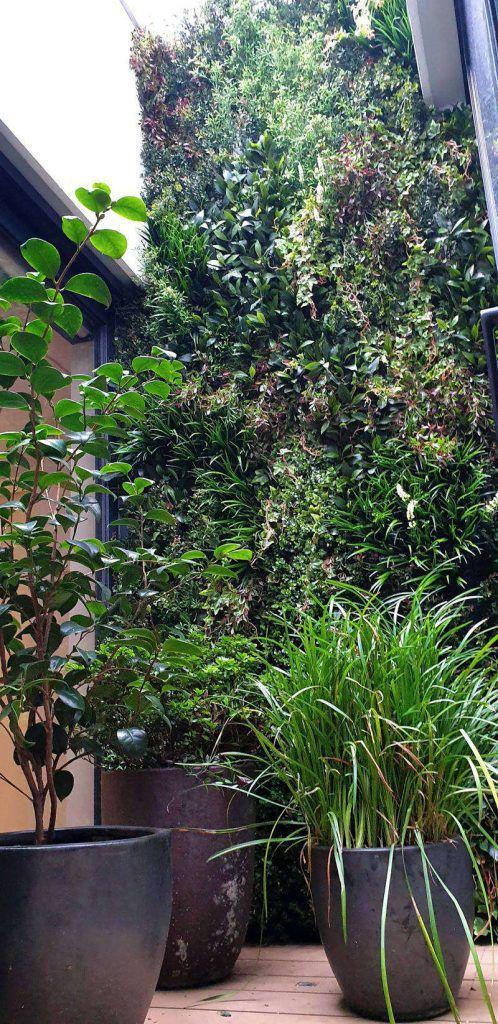 Green wall with hidden doors