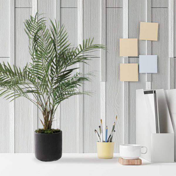 LTT Areca Palm 15 black_Office