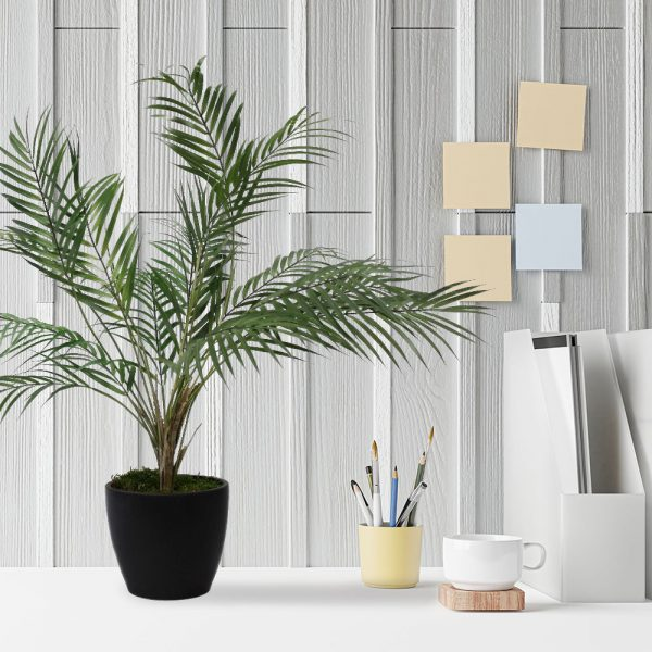 LTT Areca Palm 18 Graphite_Office