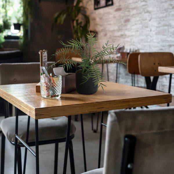 LTT Blechnum Fern 12 black_Cafe